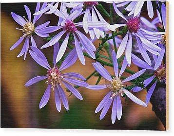 Purple Flowers Wood Print by Andre Faubert