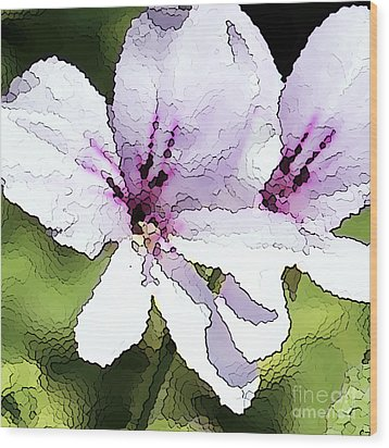 Purple Geranium Wood Print by Artist and Photographer Laura Wrede