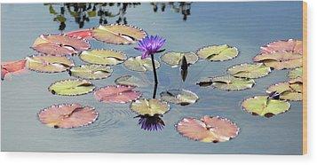 Purple Mirror Wood Print by