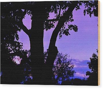 Purple Morning Wood Print by Todd Sherlock