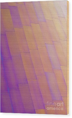 Purple Orange Two Wood Print by Chris Dutton