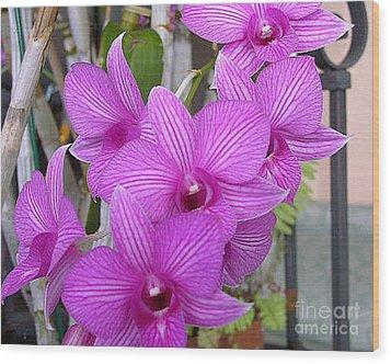 Purple Orchids Wood Print by Merton Allen