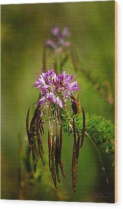 Wood Print featuring the photograph Purple Pizzazz by Vicki Pelham