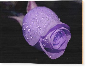Purple Rain Drops Wood Print