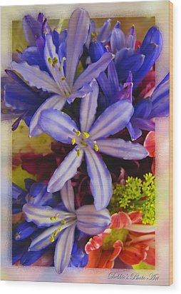Wood Print featuring the photograph Purple Stars by Debbie Portwood