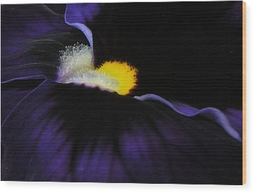 Wood Print featuring the photograph Purple Viola Abstract by Deborah Smith