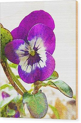 Purple Viola Wood Print by Robin Hewitt