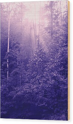 Purple Woods Wood Print by Nina Fosdick