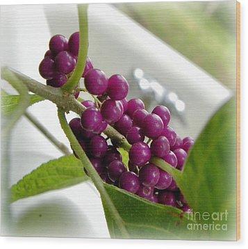Purples And Greens Wood Print by Tisha  Clinkenbeard