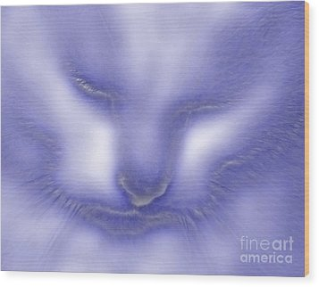 Wood Print featuring the photograph Digital Puss In Blue by Linsey Williams