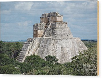 Pyramid Of The Magician At Uxmal Mexico Wood Print by Shawn O'Brien