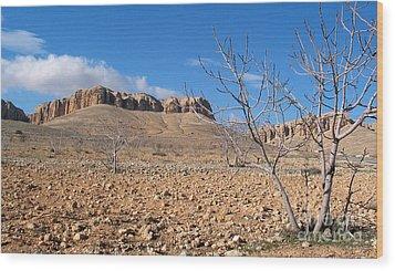 Qalamoun Mountains Wood Print by Issam Hajjar