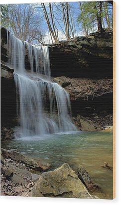 Quakertown Falls Wood Print