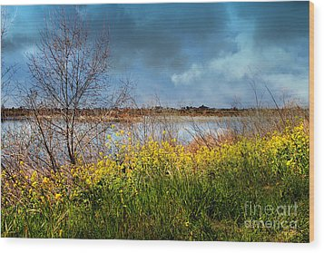 Quarry Lakes In Fremont California . 7d12643 Wood Print by Wingsdomain Art and Photography