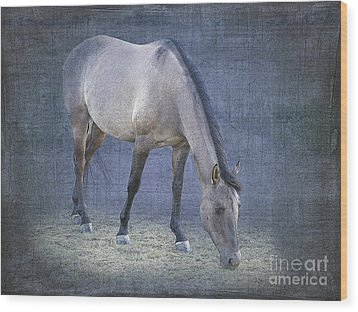 Quarter Horse In Blue Wood Print by Betty LaRue