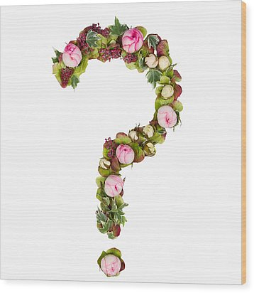 Question Mark Wood Print by PhotoStock-Israel