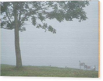 Quiet Fog Rolling In Wood Print by Karol Livote