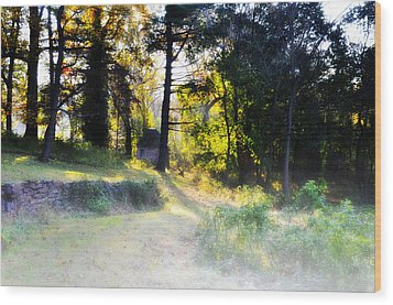 Quiet Morning In The Woods Wood Print by Bill Cannon