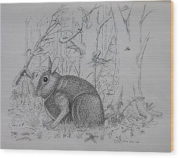 Rabbit In Woodland Wood Print by Daniel Reed