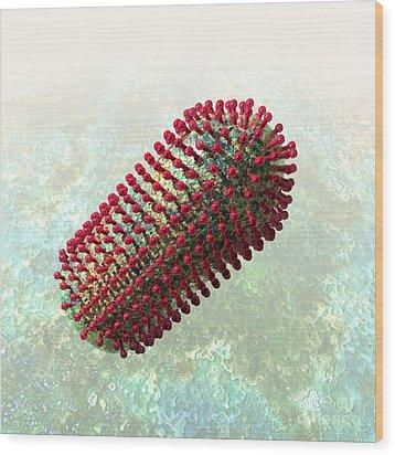 Rabies Virus 2 Wood Print by Russell Kightley