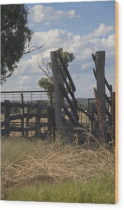 Wood Print featuring the photograph Race In The Paddock. by Carole Hinding