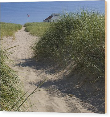 Wood Print featuring the photograph Race Point by Michael Friedman