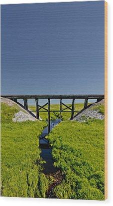 Railroad Trestle Wood Print by Roderick Bley