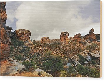 Rain At The Needles District Wood Print by Marty Koch