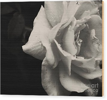 Wood Print featuring the photograph Rain Drops On Roses by Julie Clements