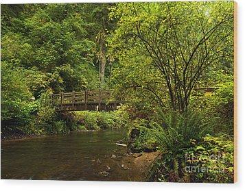 Rain Forest Bridge Wood Print by Adam Jewell
