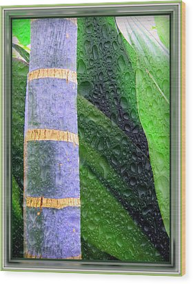 Rain Forest Wood Print by Mindy Newman