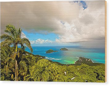 Rain In The Tropics Wood Print by Keith Allen