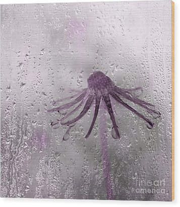 Rain On Me - Pink Wood Print by Aimelle