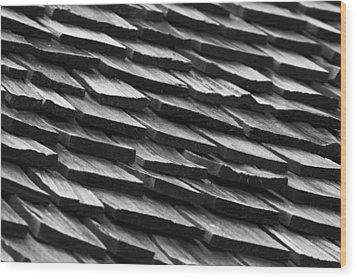 Rain Shield Wood Print by Nicholas Evans