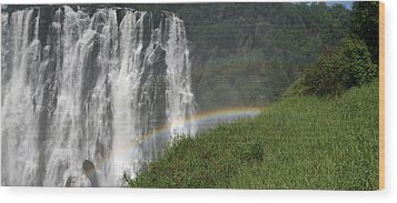 rainbow at Victoria falls Wood Print