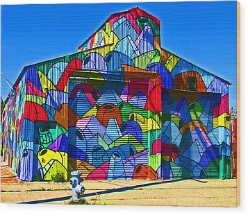 Rainbow Jug Building Wood Print by Samuel Sheats