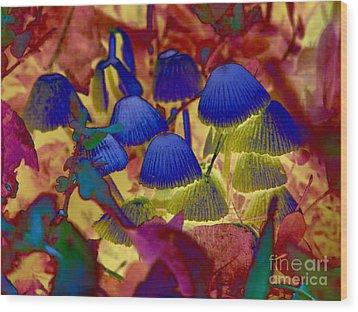 Rainbow Mushrooms Wood Print by Erica Hanel
