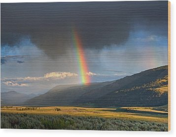 Rainbow Over Lamar Valley Wood Print by Yvonne Baur