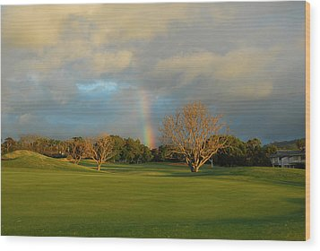 Rainbow Over Princeville Wood Print by Lynn Bauer