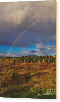 Rainbow Over Rithets Bog Wood Print by Louise Heusinkveld
