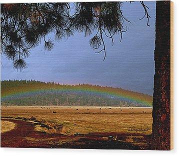 Rainbow Ridge Wood Print by Cindy Wright