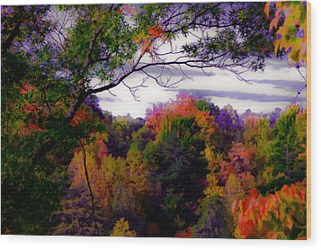Rainbow Treetops Wood Print by DigiArt Diaries by Vicky B Fuller