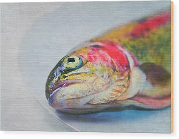 Rainbow Trout On Plate Wood Print by Image by Catherine MacBride