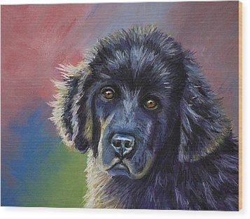 Rainbows And Sunshine - Newfoundland Puppy Wood Print
