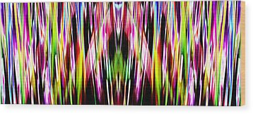 Rainbows Wood Print by Danny Lally