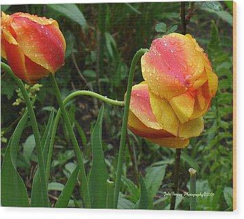 Raindrops And Tulips Wood Print