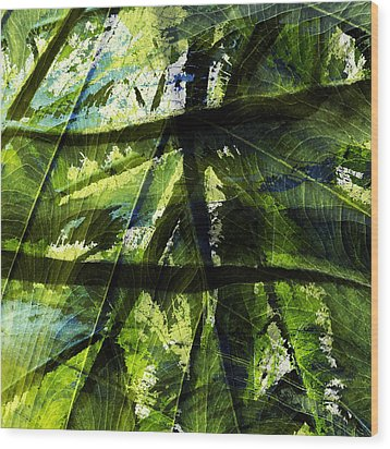 Rainforest Abstract Wood Print by Bonnie Bruno