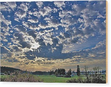 Rainier Country Wood Print by Sean Griffin