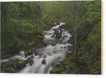 Rainier Forest Flow Wood Print by Mike Reid