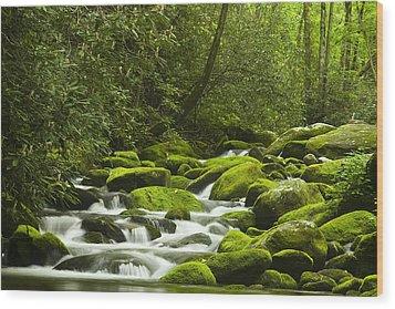 Rapids At Springtime Wood Print by Andrew Soundarajan
